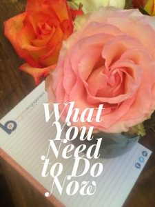 Using Pinterest for your Business? Here are tips of What You Need to Do Now