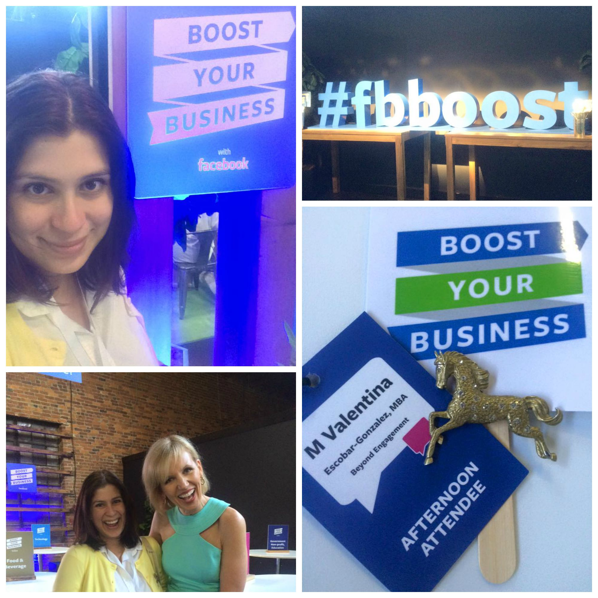 Facebook Boost Your Business 2015 in Nashville Collage, with Mari Smith